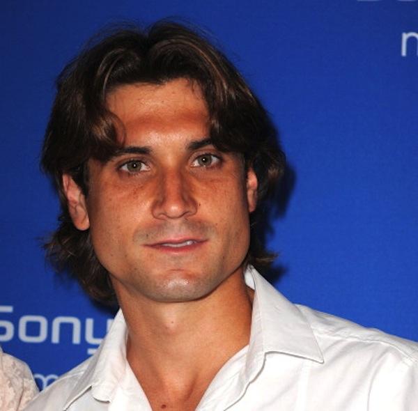 David Ferrer Vinos Alicante DOP