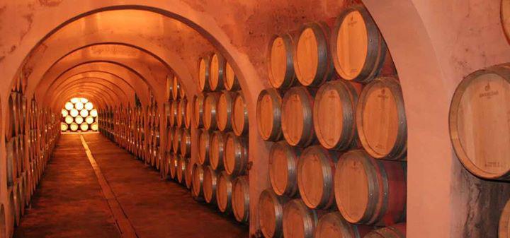 Añada muy buena Vinos Alicante DOP