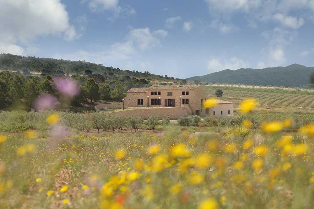 Enoturismo Vinos Alicante DOP